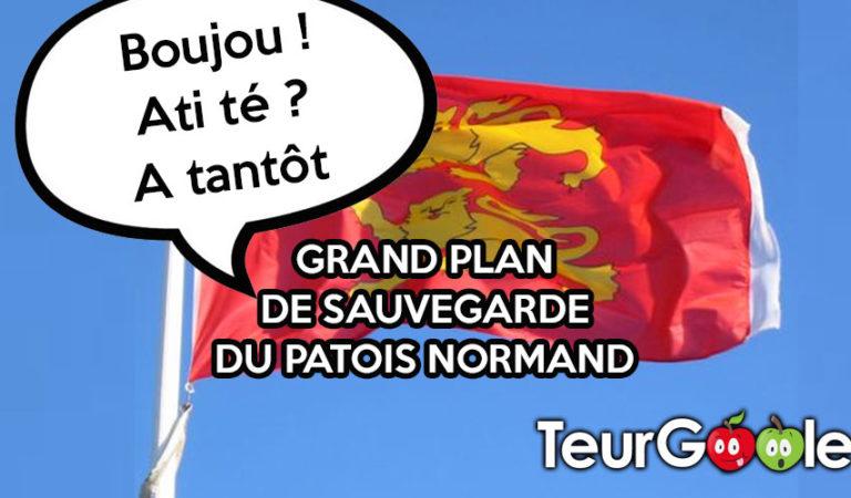 Le Patois Normand obligatoire à l'école à la prochaine rentrée.