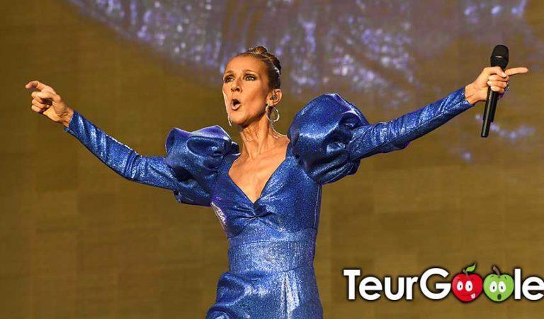 Céline Dion à Carhaix : 3 millions de bouchons d'oreilles seront distribués en Bretagne